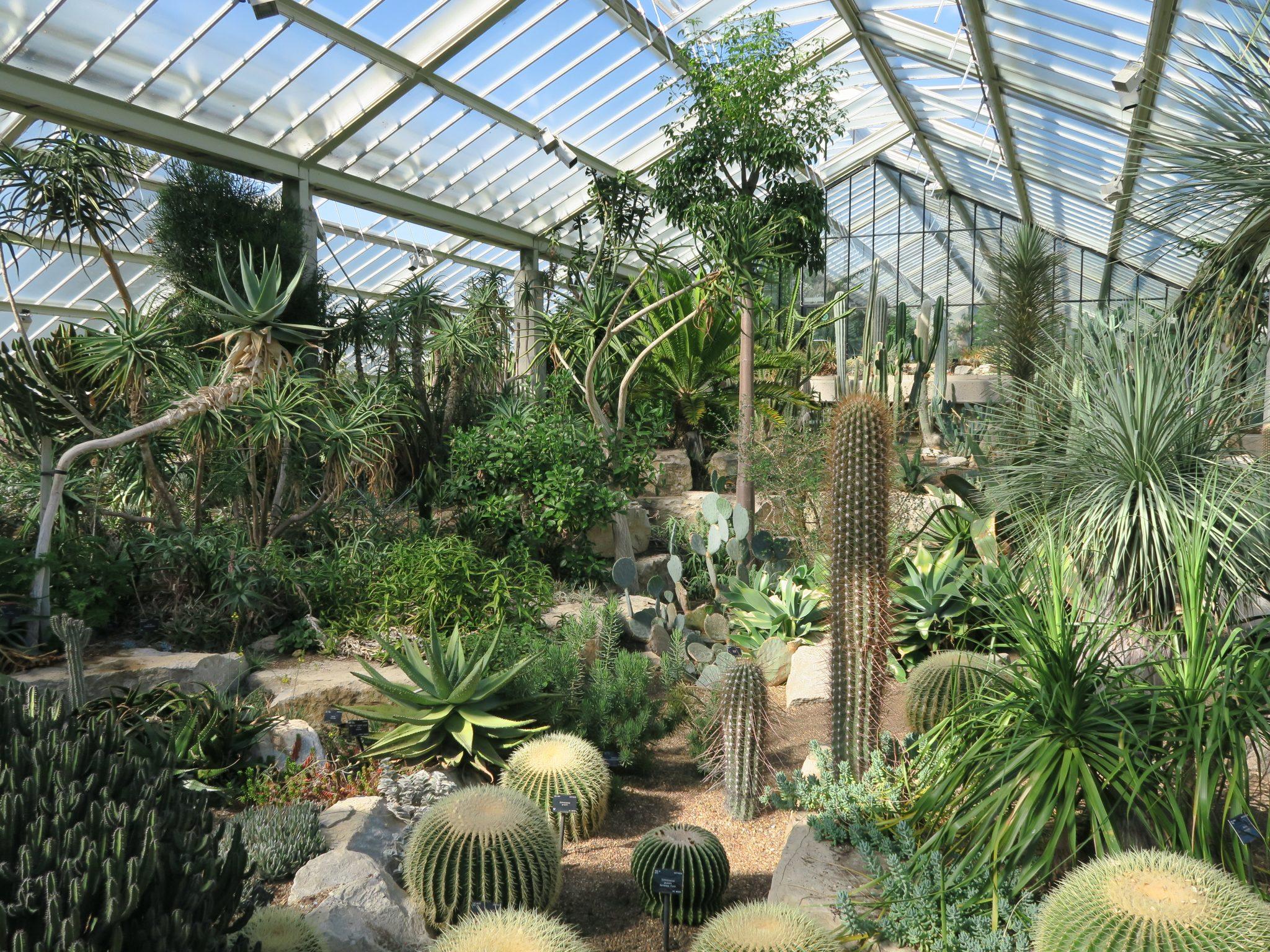 Kew Gardens Food Review