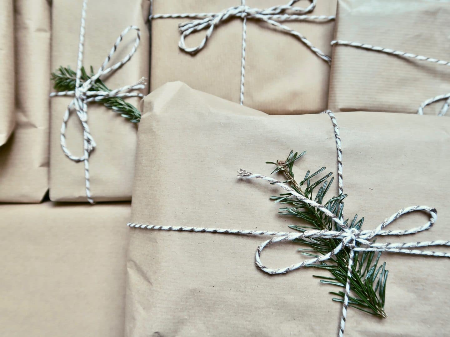 12 Days of Giftmas Giveaway | Curiously Conscious