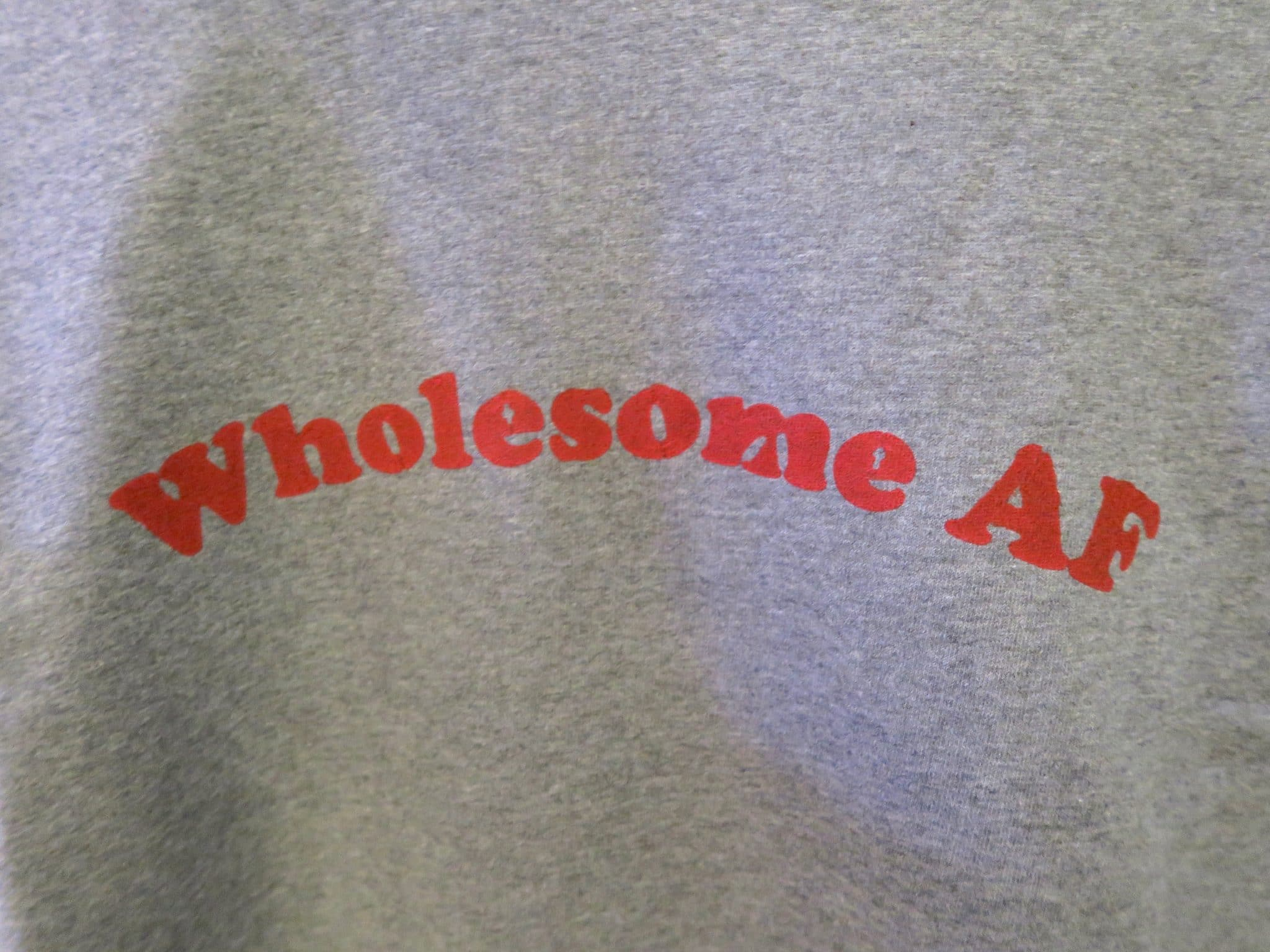 Birdsong Wholesome AF Sweatshirt | Curiously Conscious