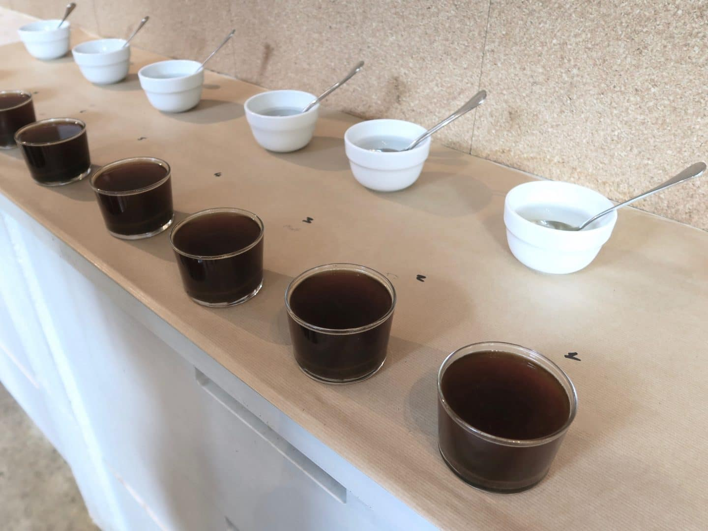 Cupping with Oatly x Old Spike | Curiously Conscious