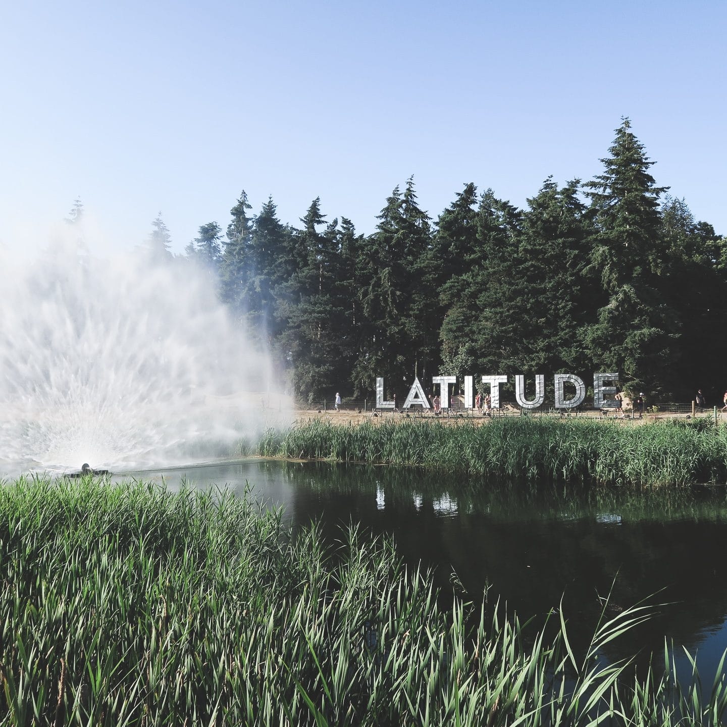 Festival Diaries: Latitude | Curiously Conscious