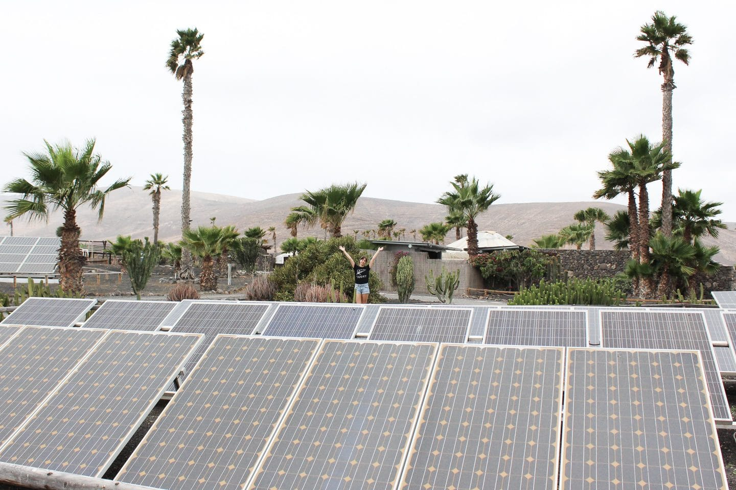 Besma stands behind solar panels, with palm trees in the background