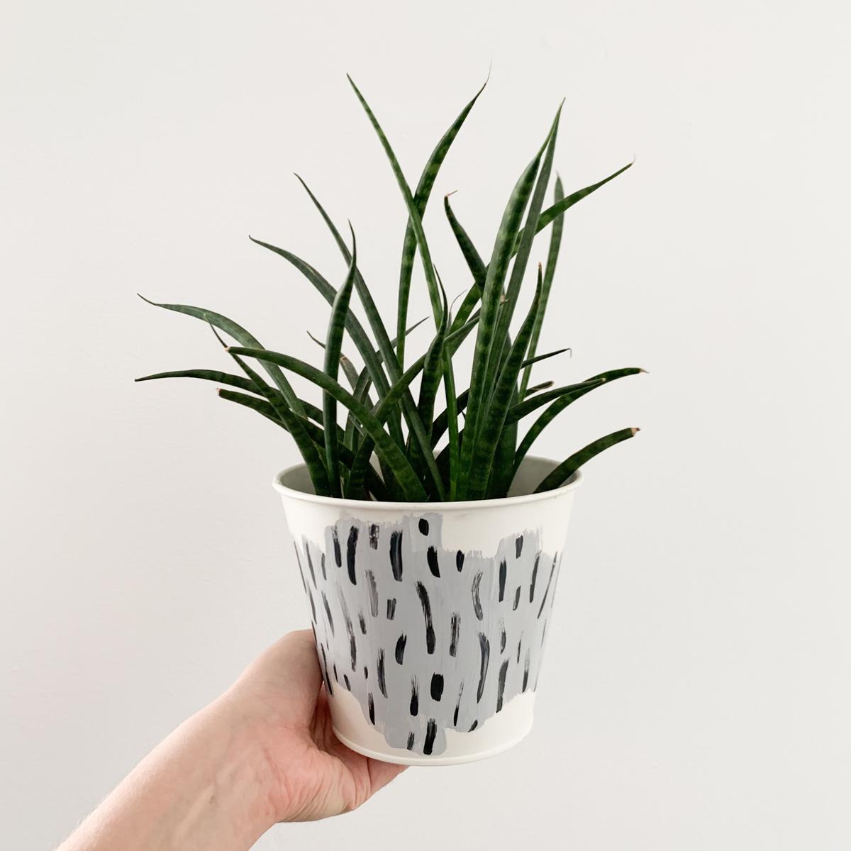 Repainted Plant Pots